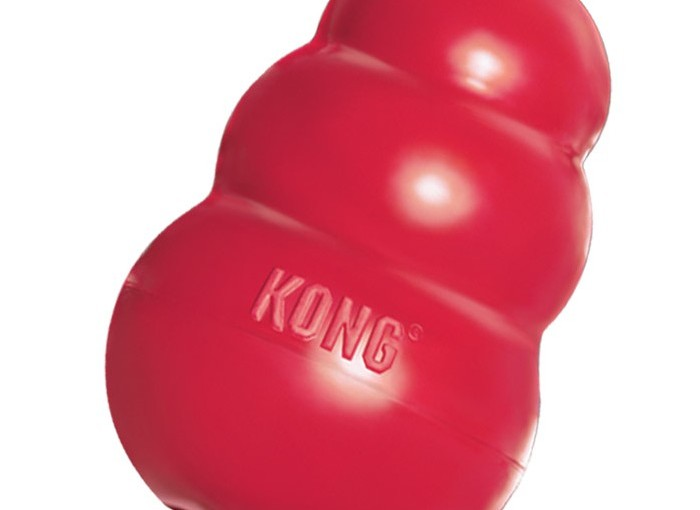 Les jouets Kong